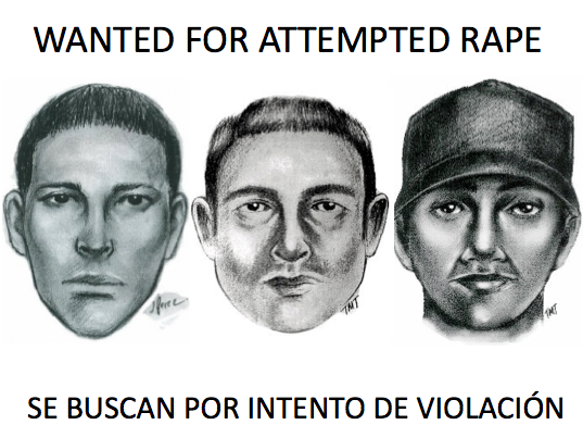 Park Slope Rapist Police Sketches