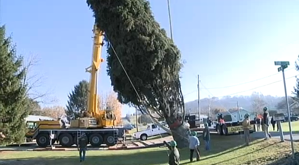 WorldView Video: Ho Ho Ho! Raw Video of Rockefeller Center Tree Cut Down
