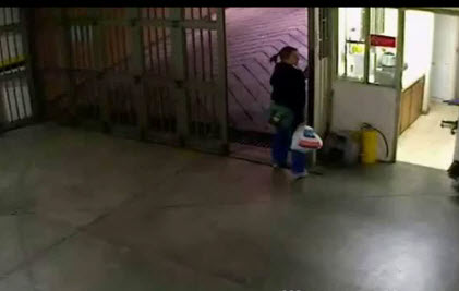 WorldView Video: Woman Gets Stuck in an Automatic Gate