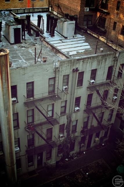Streets of New York: From the Roof