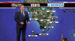 Univision Cat Weather YouTube